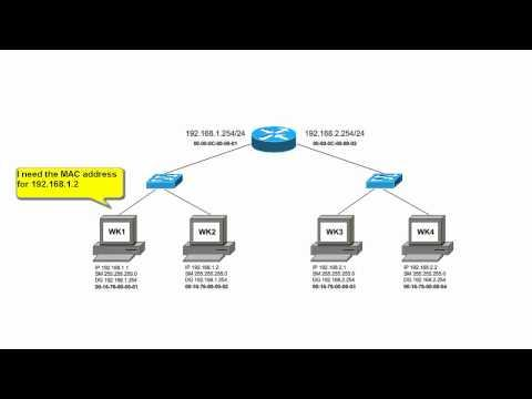 How Are IP Packets Routed On A Local Area Network?
