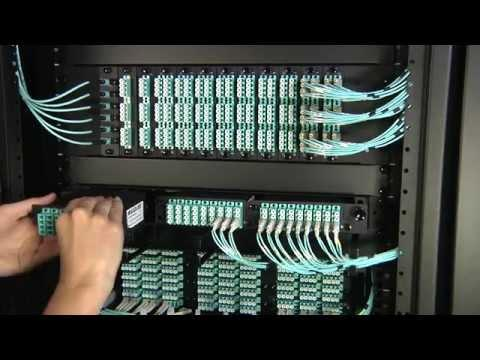 MTP Connector Rackmount Fiber Solutions